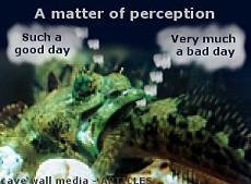 """Funnies – """"A matter of perception"""" – good day, bad day."""